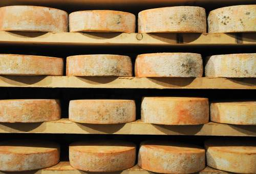 fontina (fromage italien)